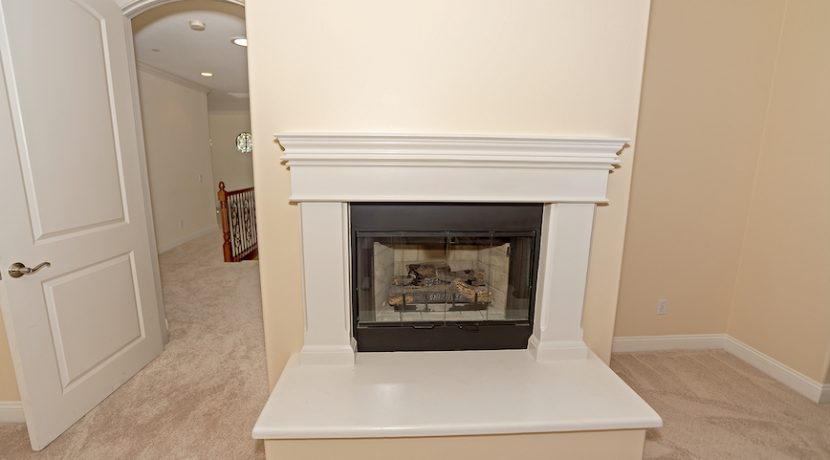 16 Master Bedroom Fireplace - 1920 HAZEL NUT CT - AG