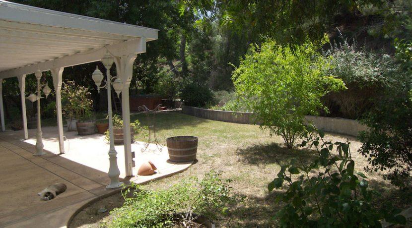 Backyard1-100_4647