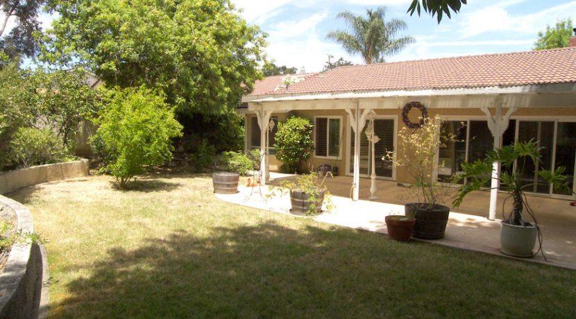 Backyard2-100_4655