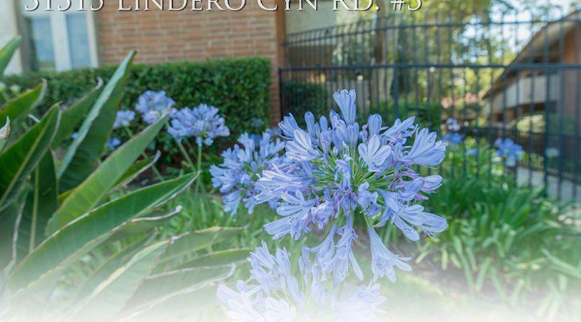 Garden Detail Image 1